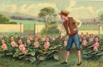 Ouvroir de Jardinage Potentiel